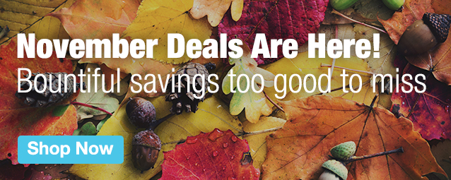 Half Page Ad – Shop our November Deals – Click to view page