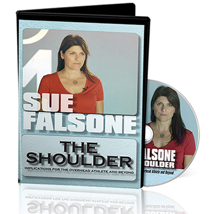 On Target Publications Sue Falsone: The Shoulder